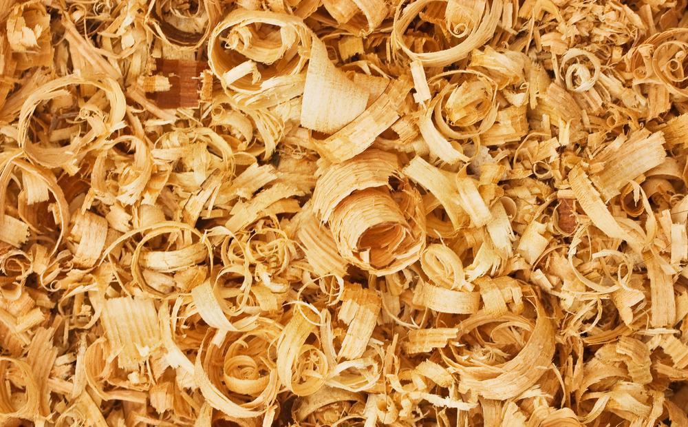Zirbenholzspäne